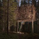 Treehotel - Happyweekend